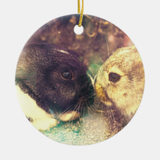 Two Bunnies, Rabit Photograph, Purple Magical Ceramic Ornament
