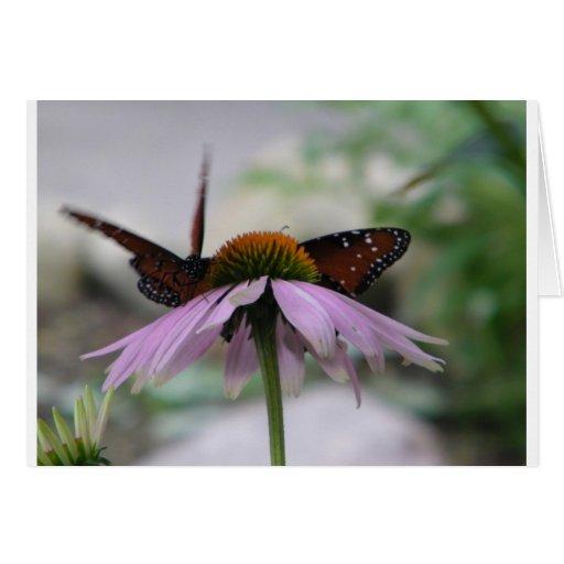 Two Butterflies Card