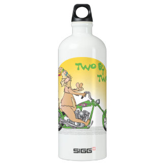 Two by Two Aluminum Water Bottle