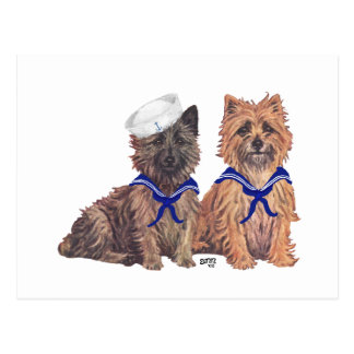 Two Cairn Terrier Sailors Postcard