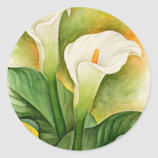 Two Cala Lilies Watercolor Art - Multi Classic Round Sticker