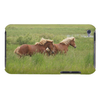 Two Cantering Palomino Horses in a Field Photo Barely There iPod Covers