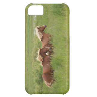 Two Cantering Palomino Horses in a Field Photo Case For iPhone 5C