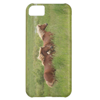 Two Cantering Palomino Horses in a Field Photo Cover For iPhone 5C