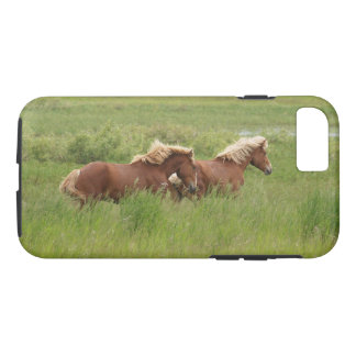 Two Cantering Palomino Horses in a Field Photo iPhone 8/7 Case