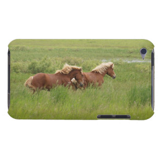 Two Cantering Palomino Horses in a Field Photo iPod Touch Covers