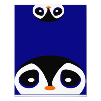 Two Cartoon Penguins Playing Peek A Boo Photo Print