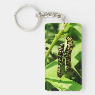 Two Caterpillars Keychain