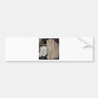 TWO CATS BUMPER STICKER