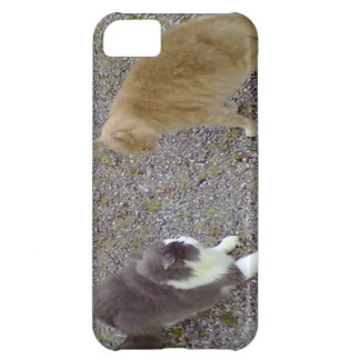 Two Cats iPhone 5C Covers