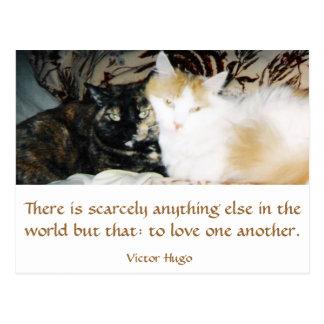 Two Cats Cheek to Cheek Postcard
