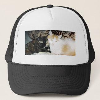 Two Cats Cheek to Cheek Trucker Hat