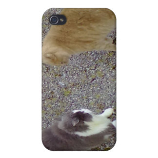 Two Cats iPhone 4 Cover