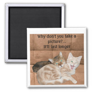 Two Cats Magnet