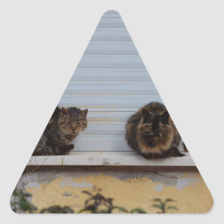 Two Cats On A Window Ledge Triangle Stickers