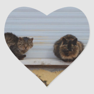 Two Cats On A Window Ledge Heart Stickers