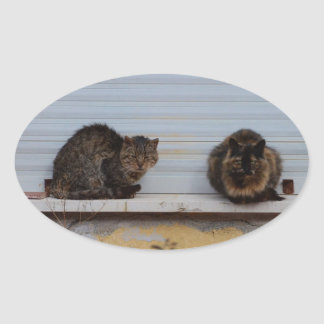 Two Cats On A Window Ledge Oval Stickers