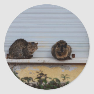 Two Cats On A Window Ledge Round Sticker