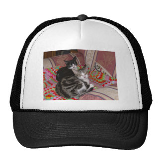 Two cats on cushion trucker hat