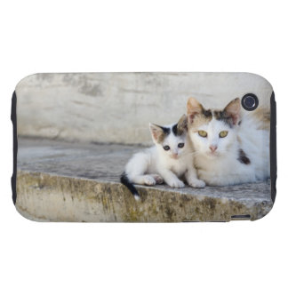 Two cats on stone steps iPhone 3 tough cases