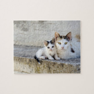 Two cats on stone steps jigsaw puzzle