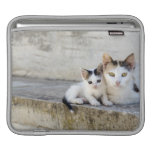Two cats on stone steps sleeve for iPads