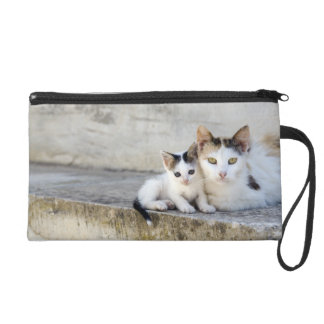 Two cats on stone steps wristlet