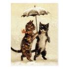 Two Cats One Umbrella Postcard