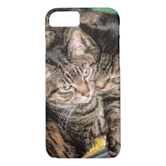 Two Cats Snuggling on a Colorful Sleeping Bag iPhone 8/7 Case