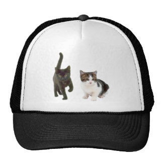 Two Cats Trucker Hat