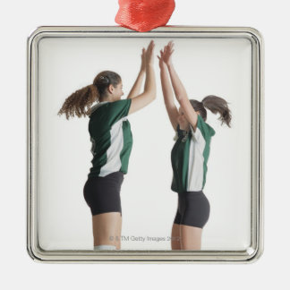 two caucasian female volleyball players from the metal ornament
