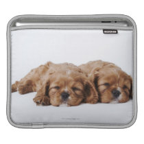 Two Cavalier King Charles Spaniel puppies Sleeve For iPads