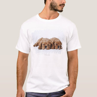 Two Cavalier King Charles Spaniel puppies T-Shirt
