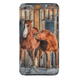 Two Cheeky Horses and a Barn Equine Photo iPod Touch Case