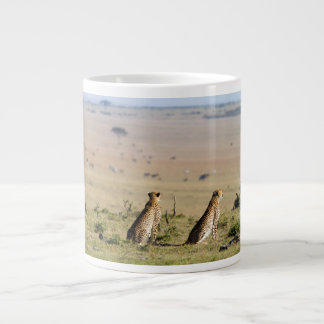 Two cheetahs on the look out large coffee mug