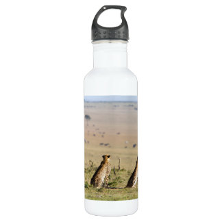 Two cheetahs on the look out stainless steel water bottle