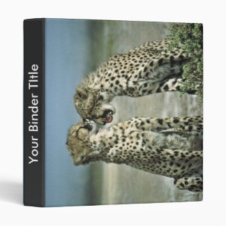 Two cheetahs sitting face to face 3 ring binders