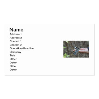 Two Chickadees on a Hand Business Card