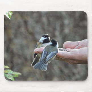 Two Chickadees on a Hand Mouse Pad
