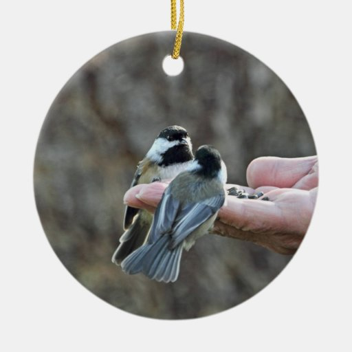 Two Chickadees on a Hand Ornaments