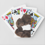 "Two chocolate Labrador Retriever Puppies Bicycle Playing Cards<br><div class=""desc"">Two chocolate Labrador Retriever Puppies 