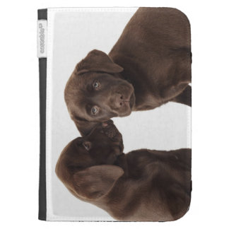 Two chocolate Labrador Retriever Puppies Kindle Cases