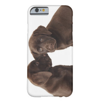Two chocolate Labrador Retriever Puppies Barely There iPhone 6 Case