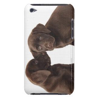 Two chocolate Labrador Retriever Puppies iPod Case-Mate Case