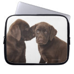 Two chocolate Labrador Retriever Puppies Laptop Sleeves