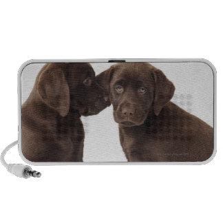 Two chocolate Labrador Retriever Puppies Portable Speaker