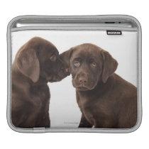 Two chocolate Labrador Retriever Puppies Sleeve For iPads