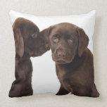 Two chocolate Labrador Retriever Puppies Throw Pillow