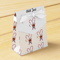 Two Christmas Candy Canes  with Ribbon Favor Box