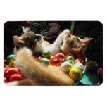 Two Christmas Kitty Cats, Kittens Together, Basket Rectangle Magnets